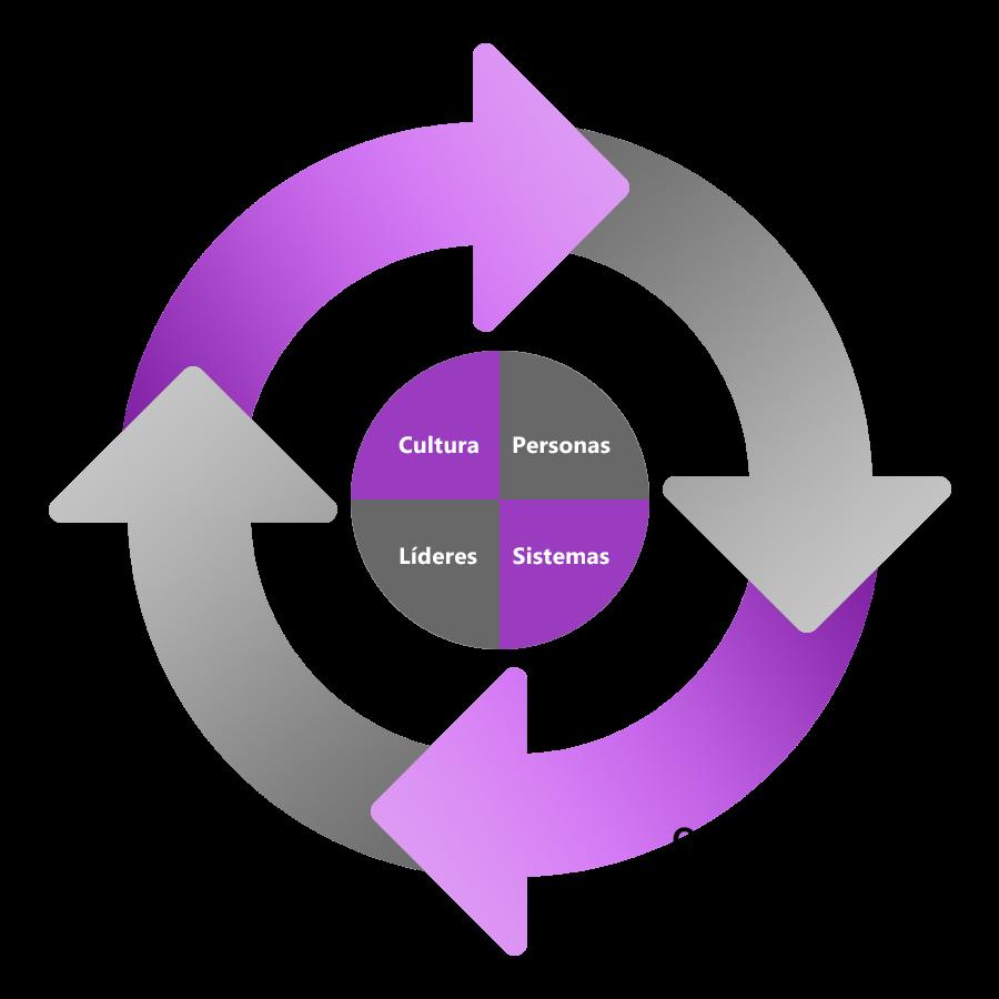 Ciclo del mentoring utilizado: cultura, personas, líderes y sistemas